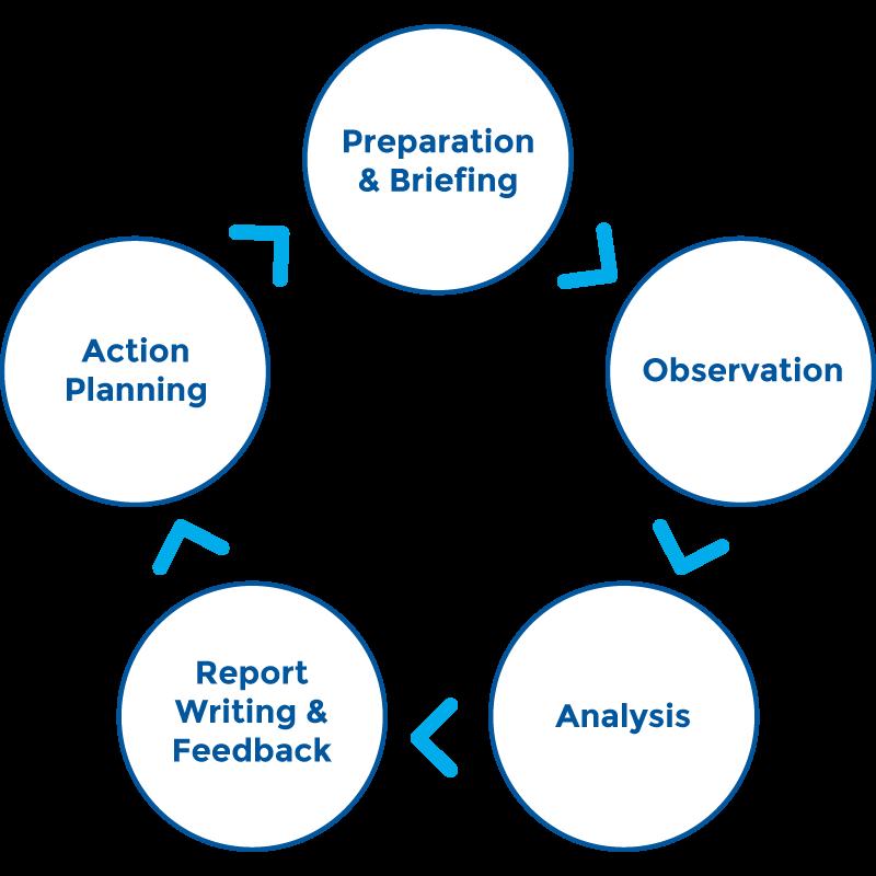 Dementia-Care-Mapping-Diagram